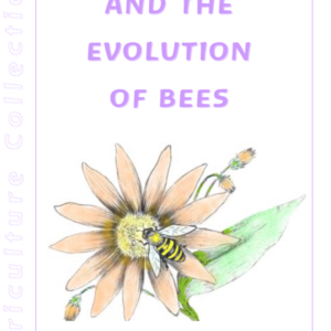 Apiculture and the Evolution of Bees